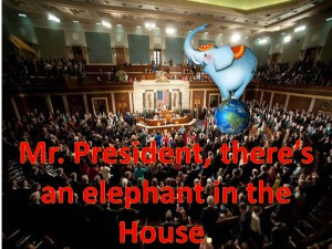 elephant in the house