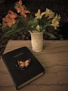 Lectio Divna Bible
